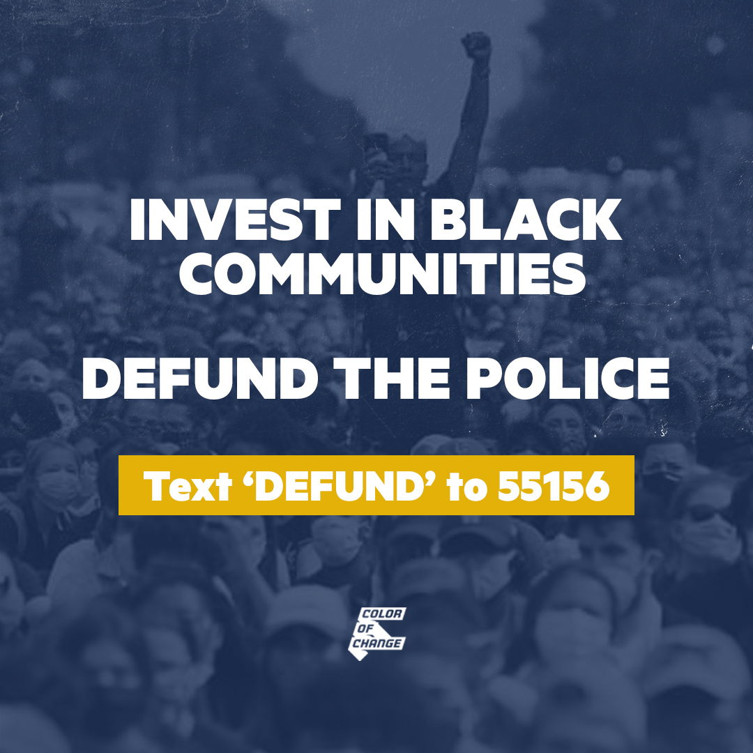 Defund the police now