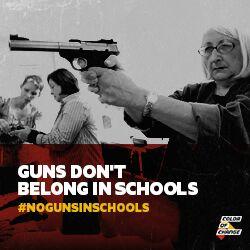 https://d11gn0ip9m46ig.cloudfront.net/images/No_Guns_in_schools_mailer.jpeg